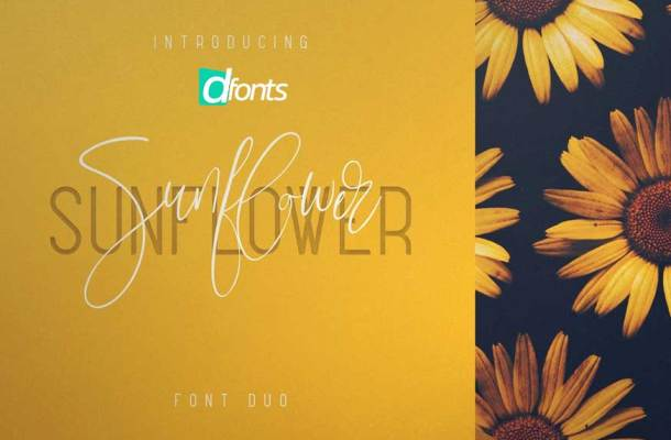 Sunflower Font Duo