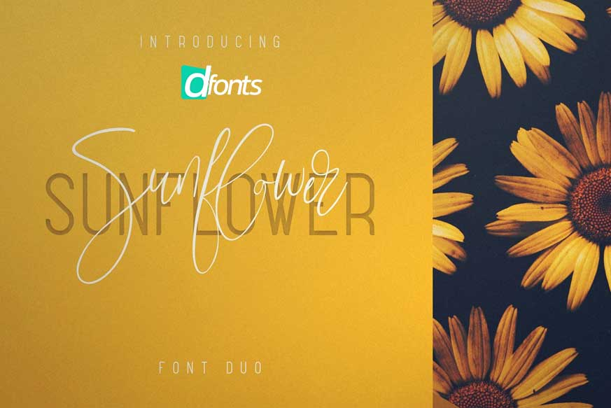 Sunflower Font Duo-1