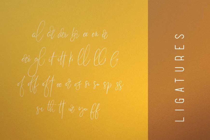 Sunflower Font Duo-2