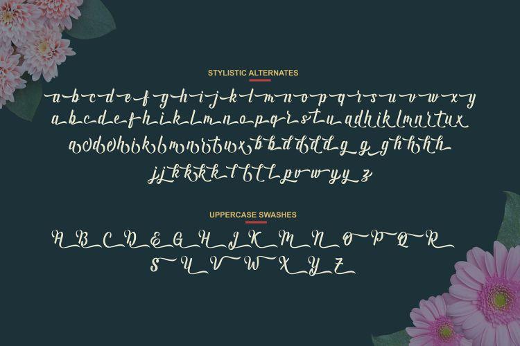 Andhyta Script Font-3