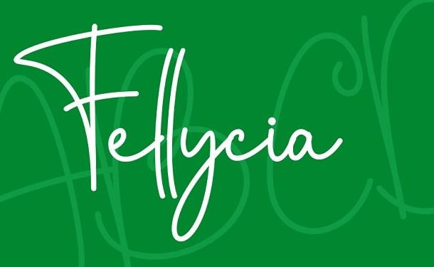 Fellycia Handwritten Font