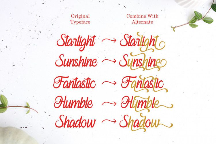 Ferishley Sunshine Script Font-3