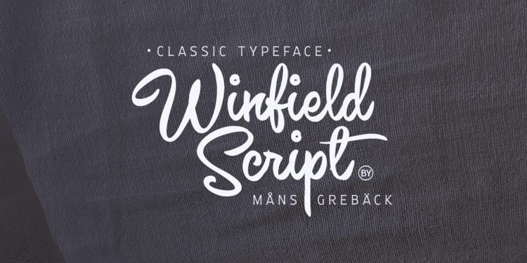 Winfield Font-1