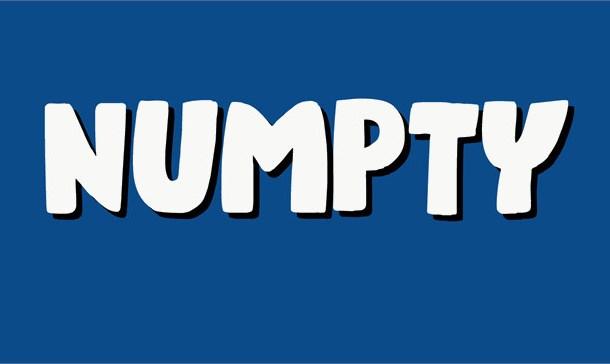 Numpty Font