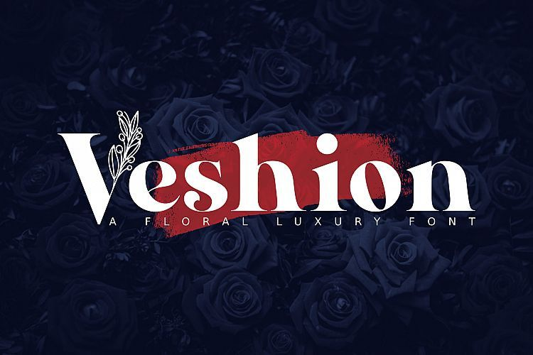 veshion-serif-font