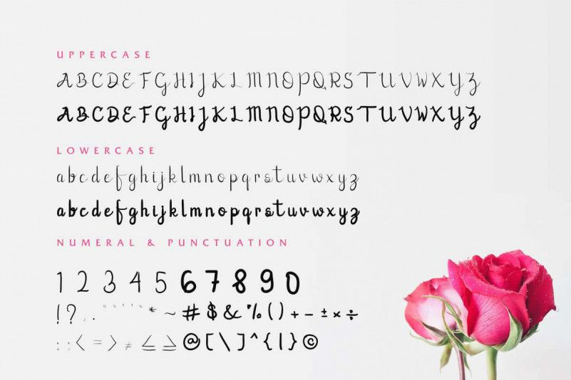 Lovic Handwriting Font-3