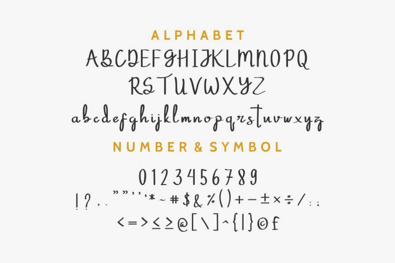 Phitton Script Font-3