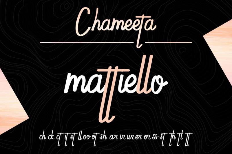 Chameeta Font-2