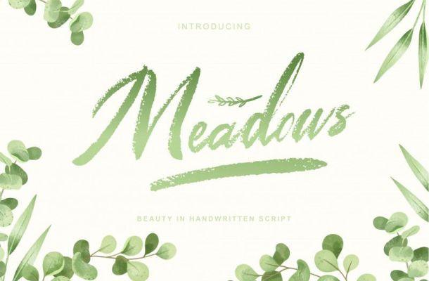 Meadows Script Font