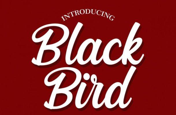 Black Bird Script Font