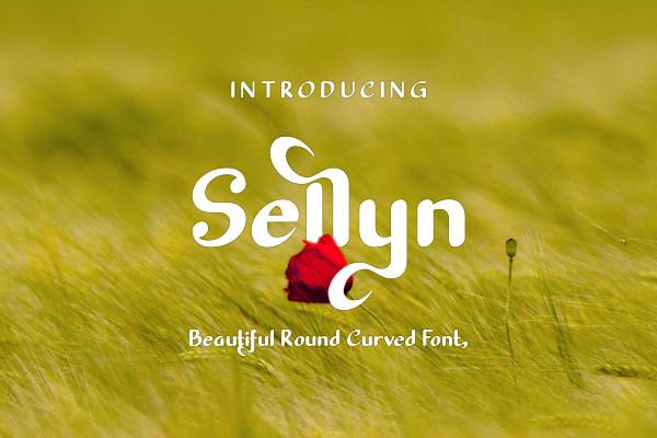 Sellyn Sans Font