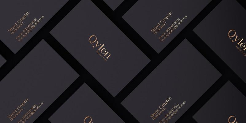 qylen-serif-font-1