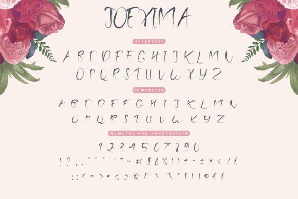 Joexima Brush Font-3