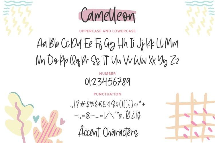 Camelleon Font-3