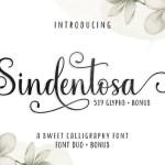 Sindentosa Calligraphy Font