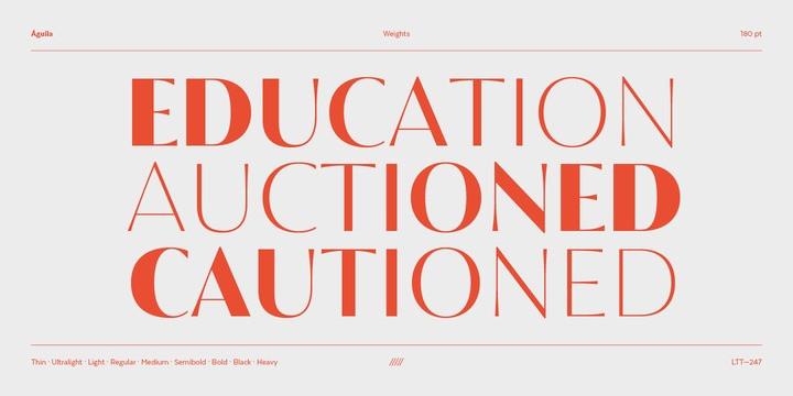 Águila Sans Serif Font-2