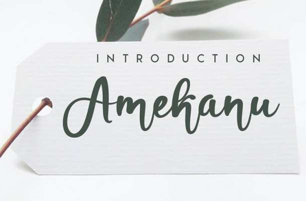 Amekanu Handwritten Script Font
