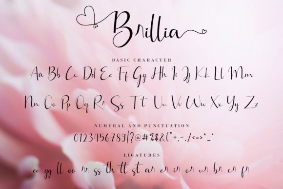 Brillia Modern Calligraphy Font-3
