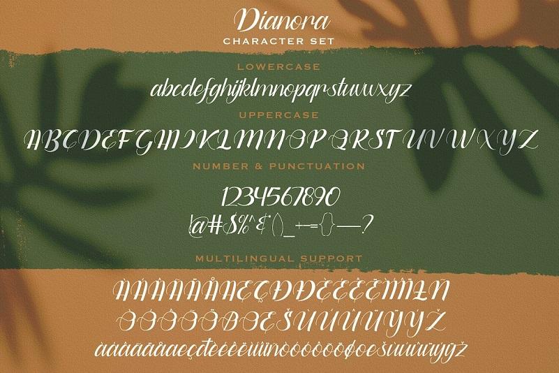 Dianora Handwritten Script Font-3