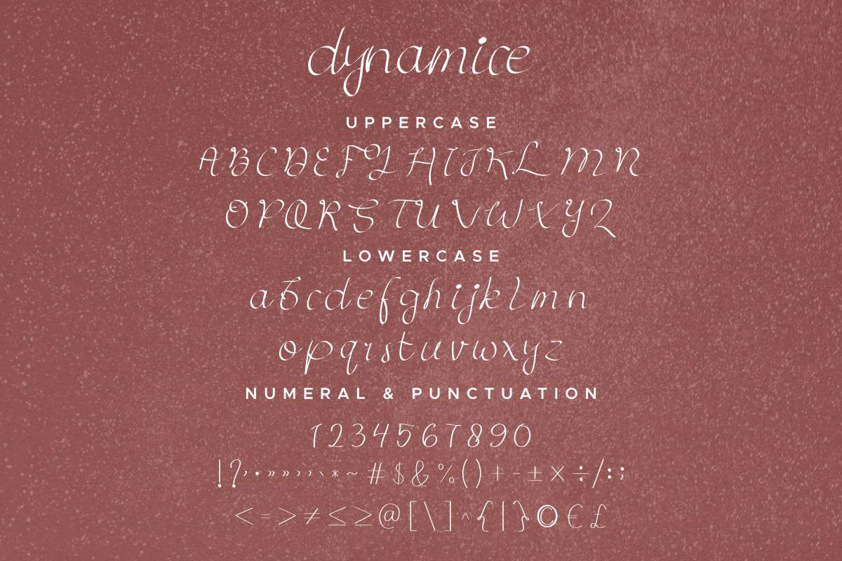 Dynamice Font Duo-4