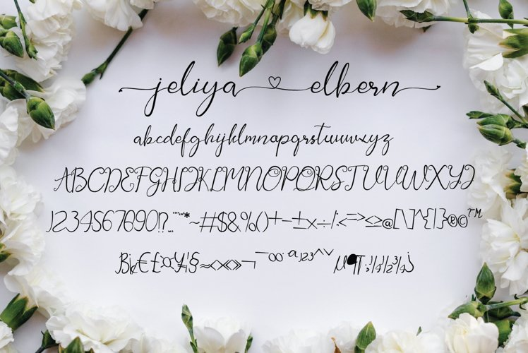 Jeliya Elbern Calligraphy Font-3