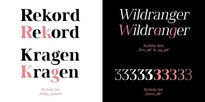 Spitzkant Serif Font-3