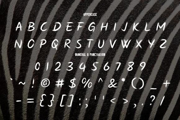 Zebra Brush Font-3