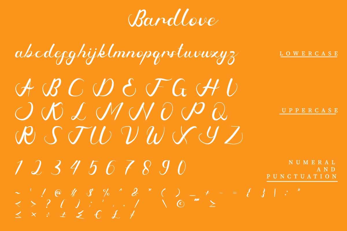 Bardlove Calligraphy Script Font-3