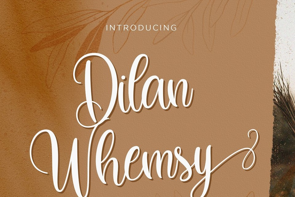 Dilan Whemsy Calligraphy Script Font-1