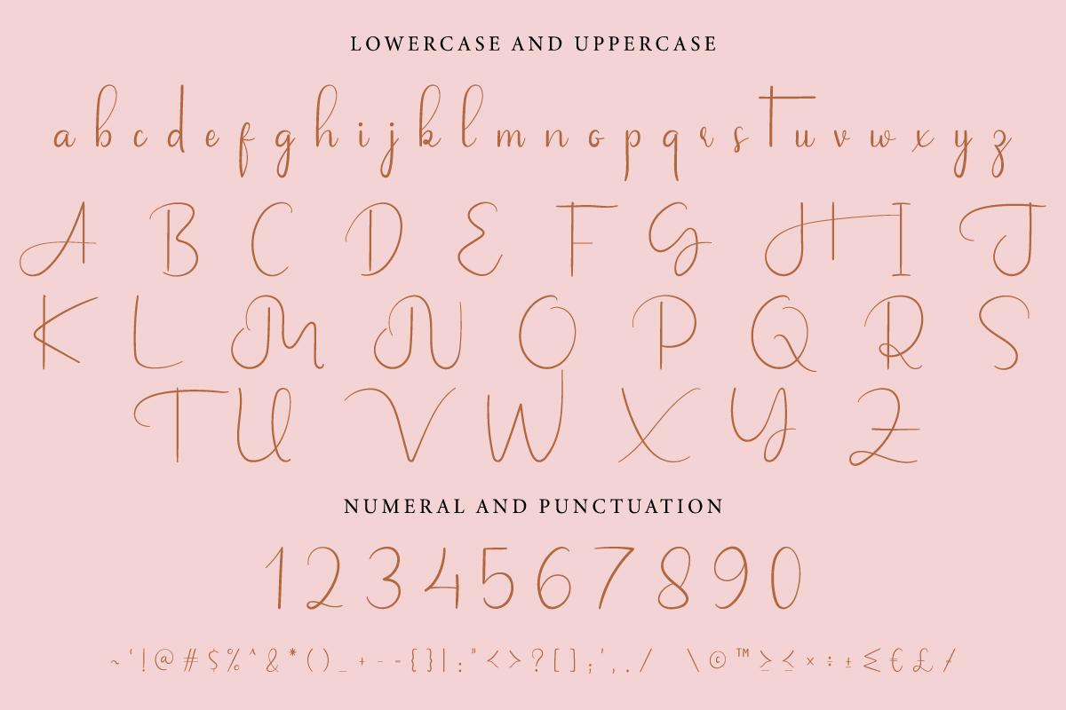 Jalousie Calligraphy Script Font-3
