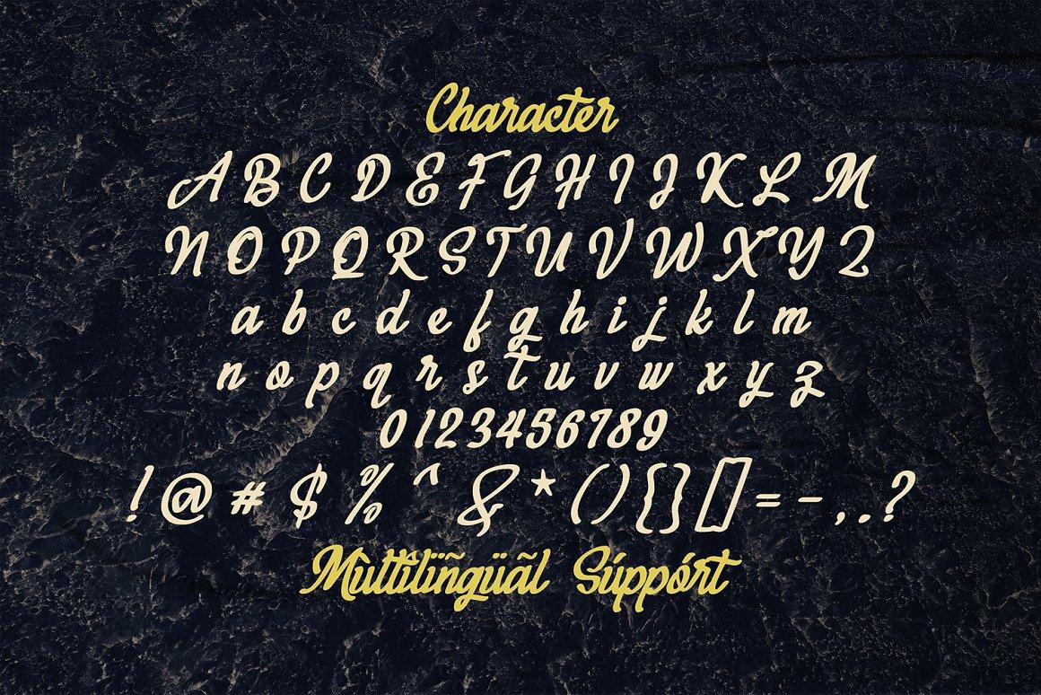 Megahunt Brush Script Font-3