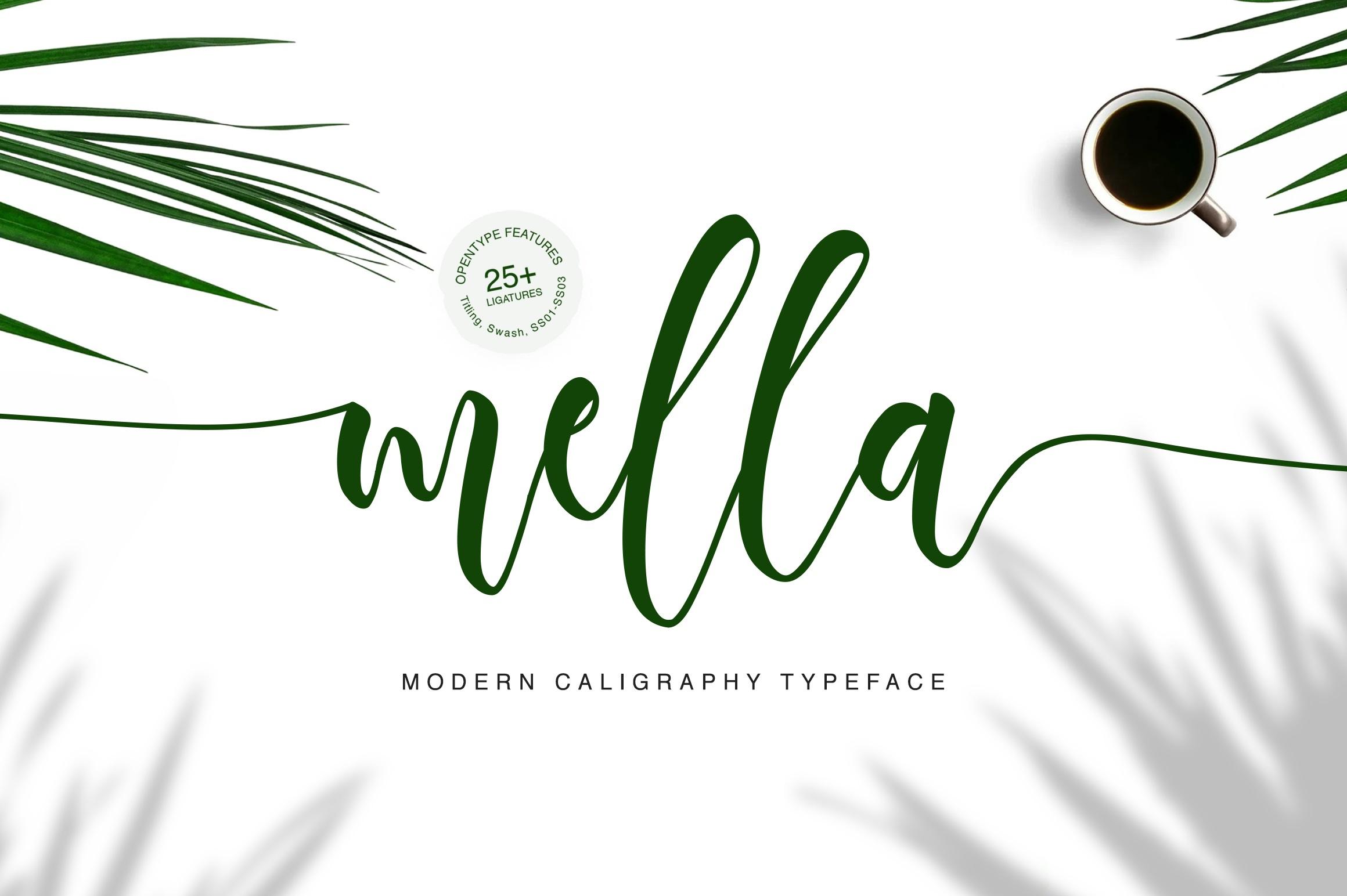 Mella Modern Calligraphy Font-1