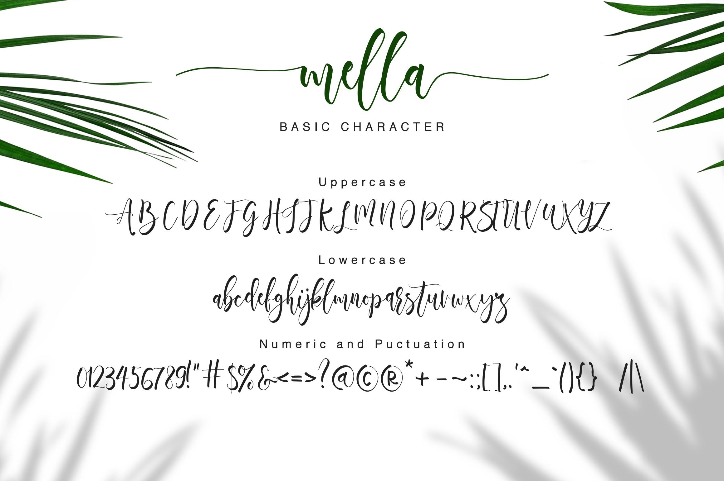 Mella Modern Calligraphy Font-3