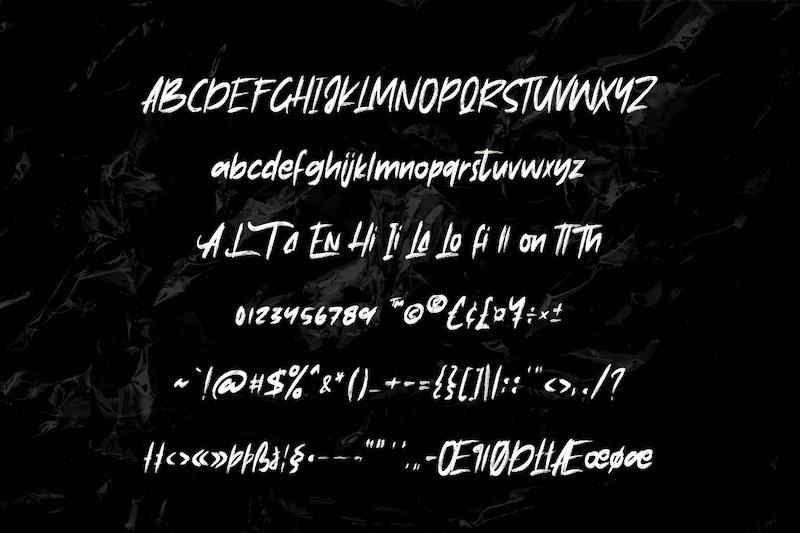 Anthrax Brush Script Font-4