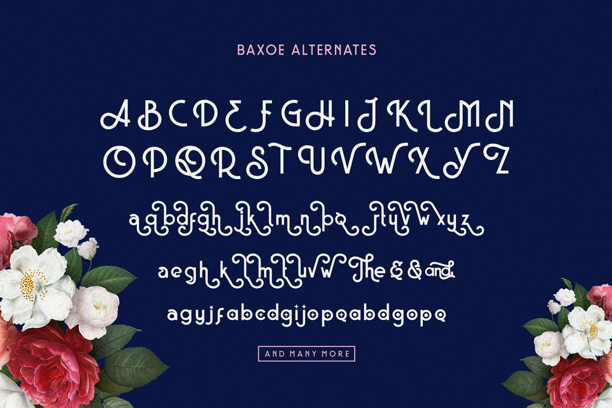 Baxoe Sans Fancy Typeface-4