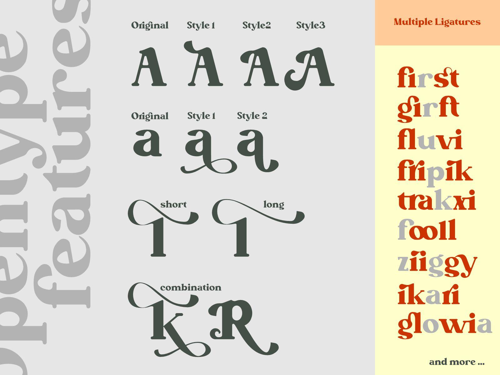 Betofin Modern Serif Font-3