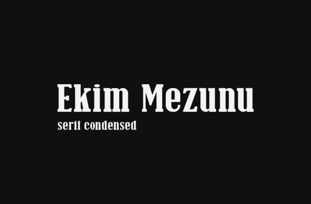 Ekim Mezunu Serif Font