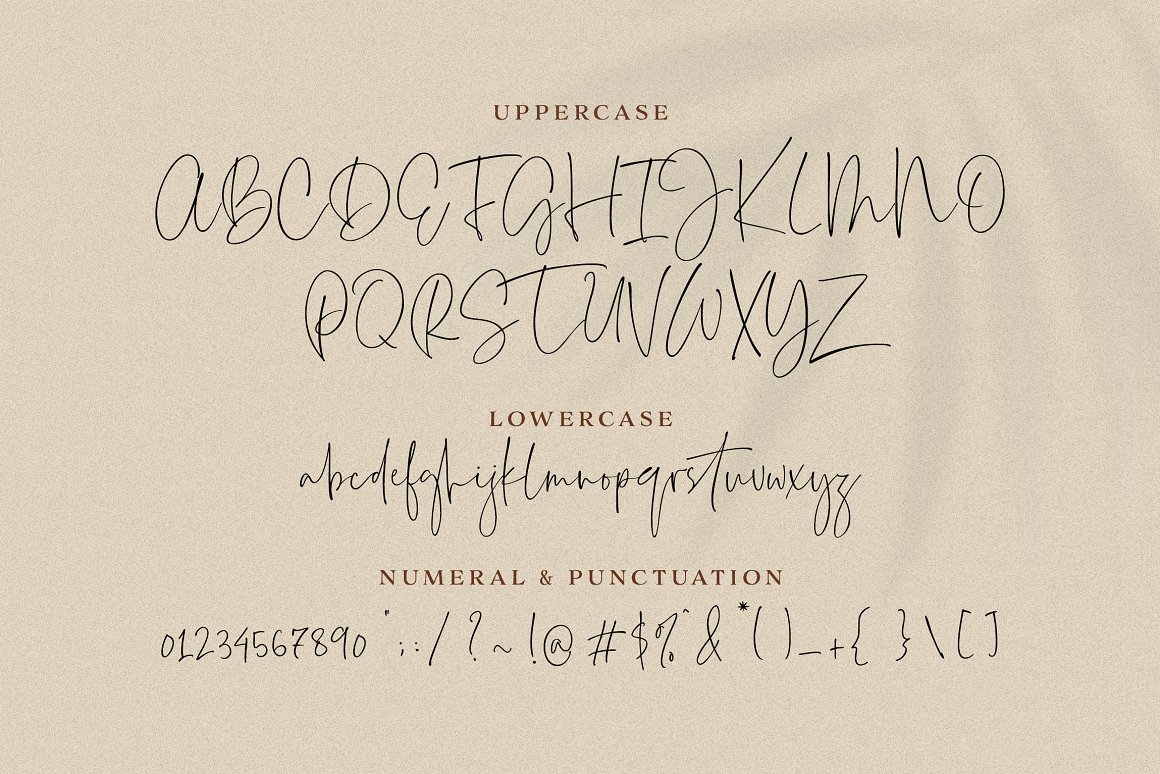 Everleigh Signature Script Font-2