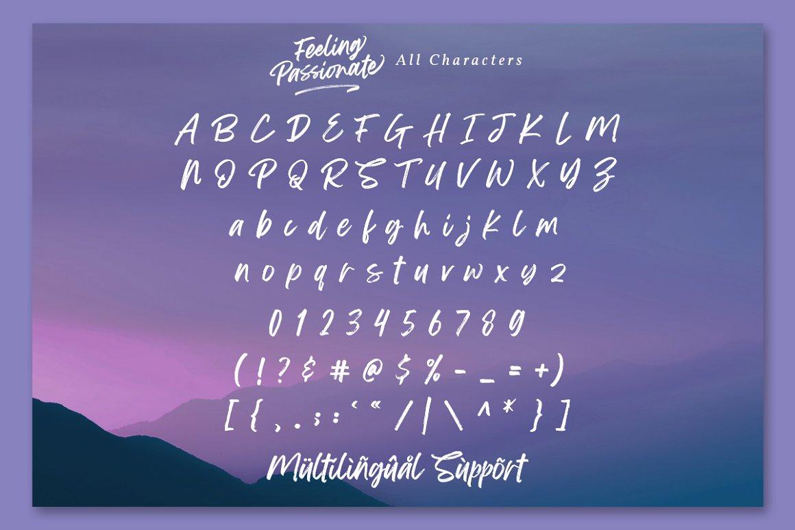 Feeling Passionate Brush Script Font-4