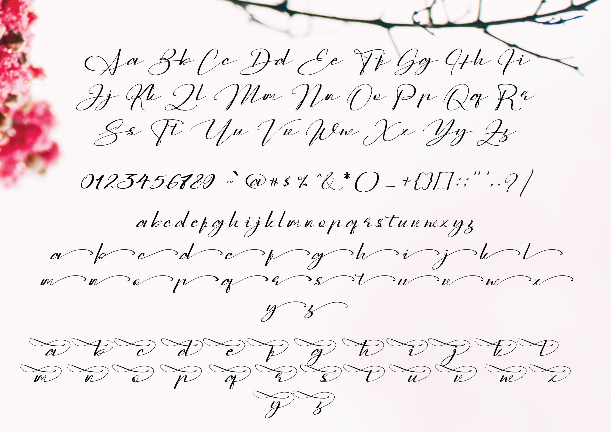 Sarony Handwritten Script Font-3