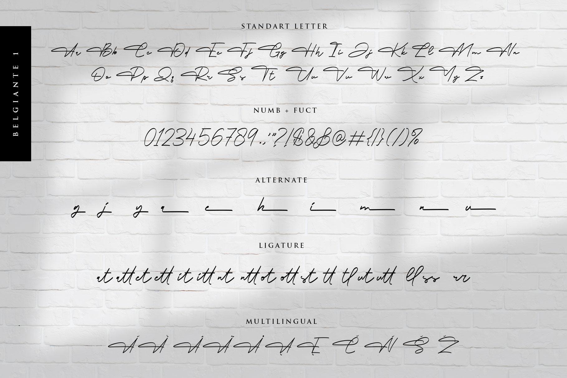 Belgiante Handwritten Signature Font-3