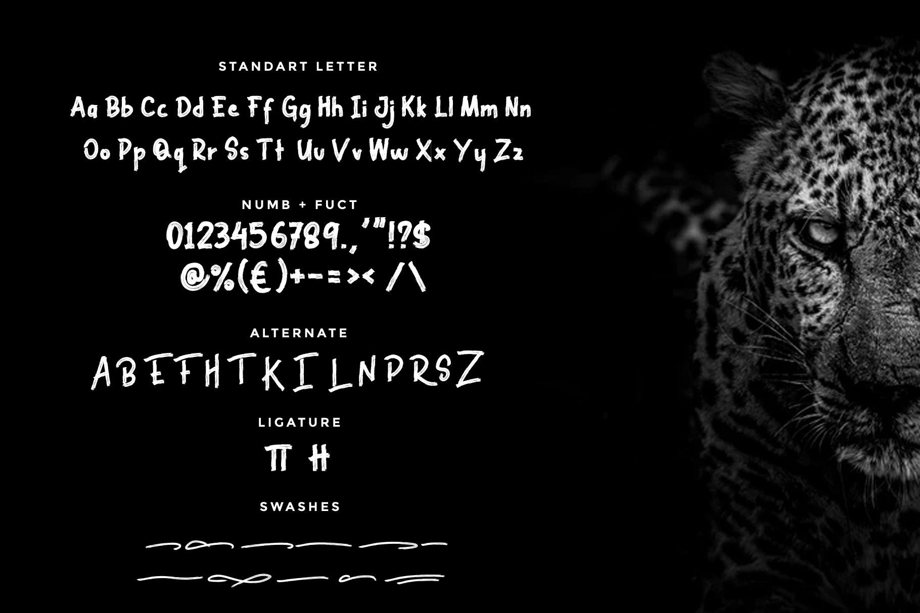Black Brutal Brush Script Font-3