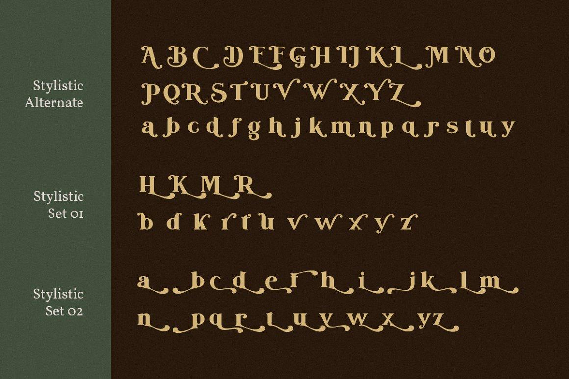 Bogota Bold Elegant Serif Font-4
