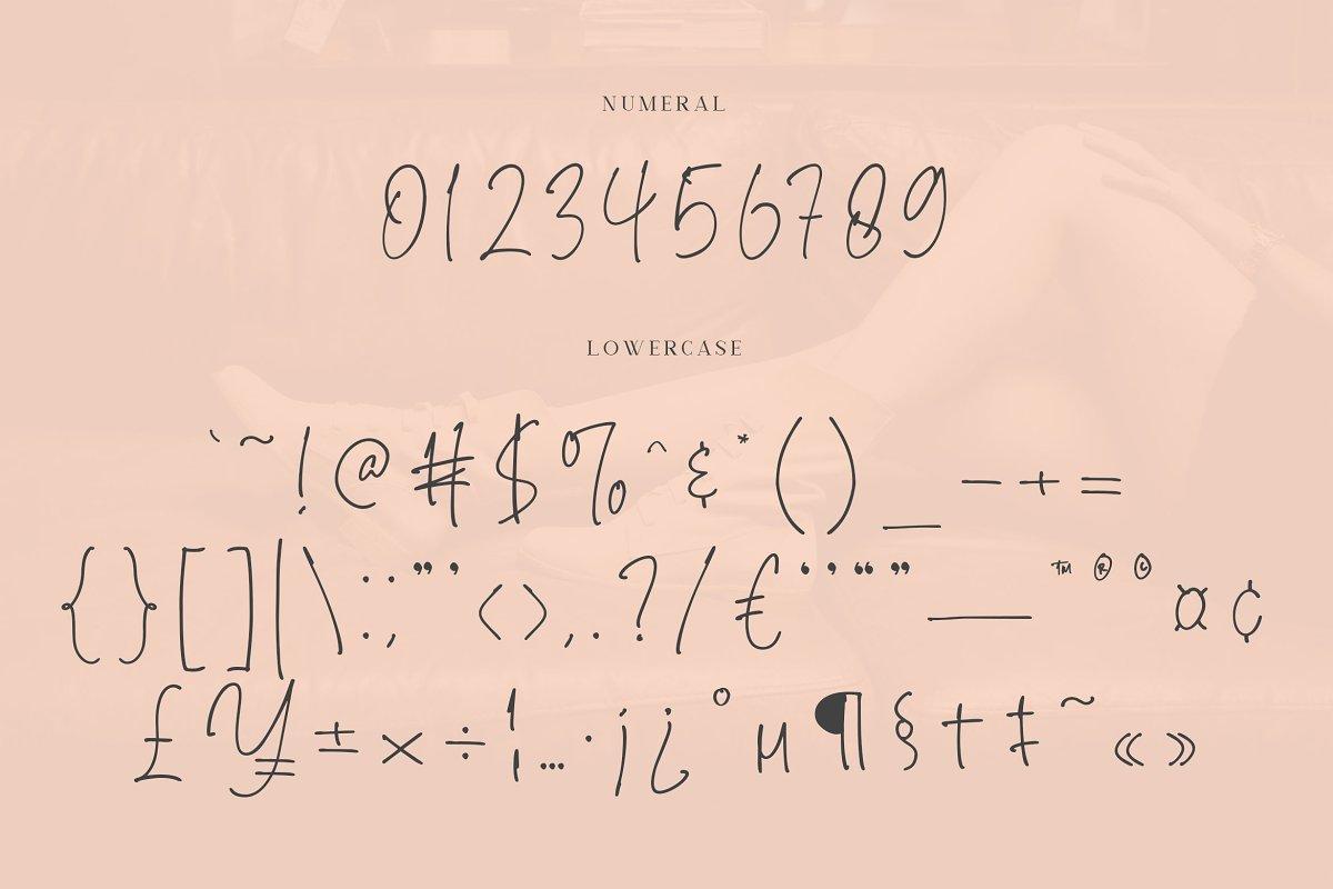 Brendria Handwritten Signature Font-3