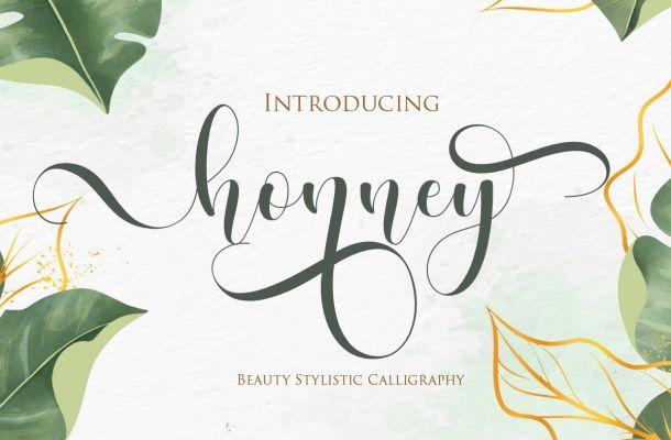 Honney Modern Calligraphy Script Font