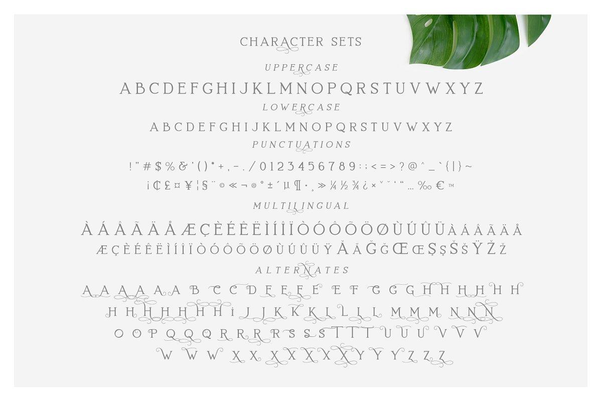 Lovelyn Elegant Serif Typeface-4