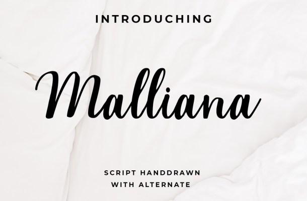 Malliana Handwritten Script Font-1