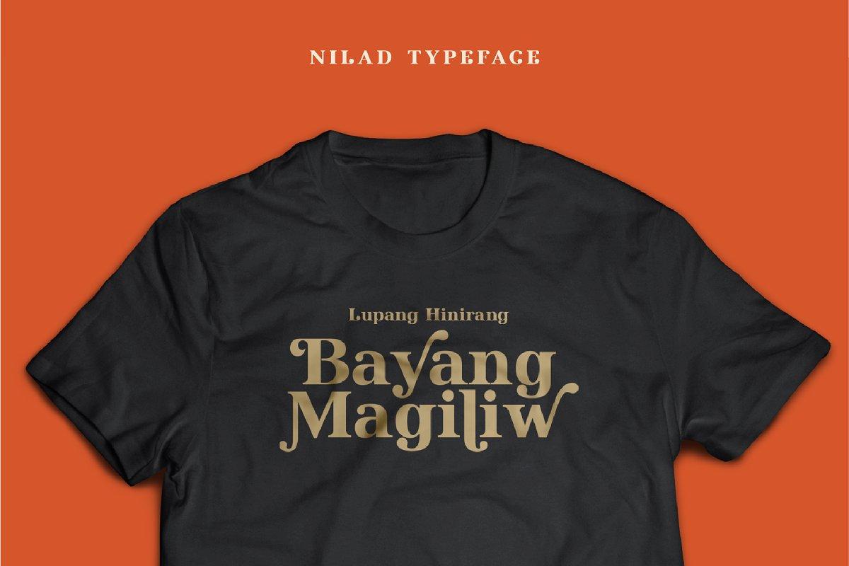 Nilad Modern Serif Typeface-2