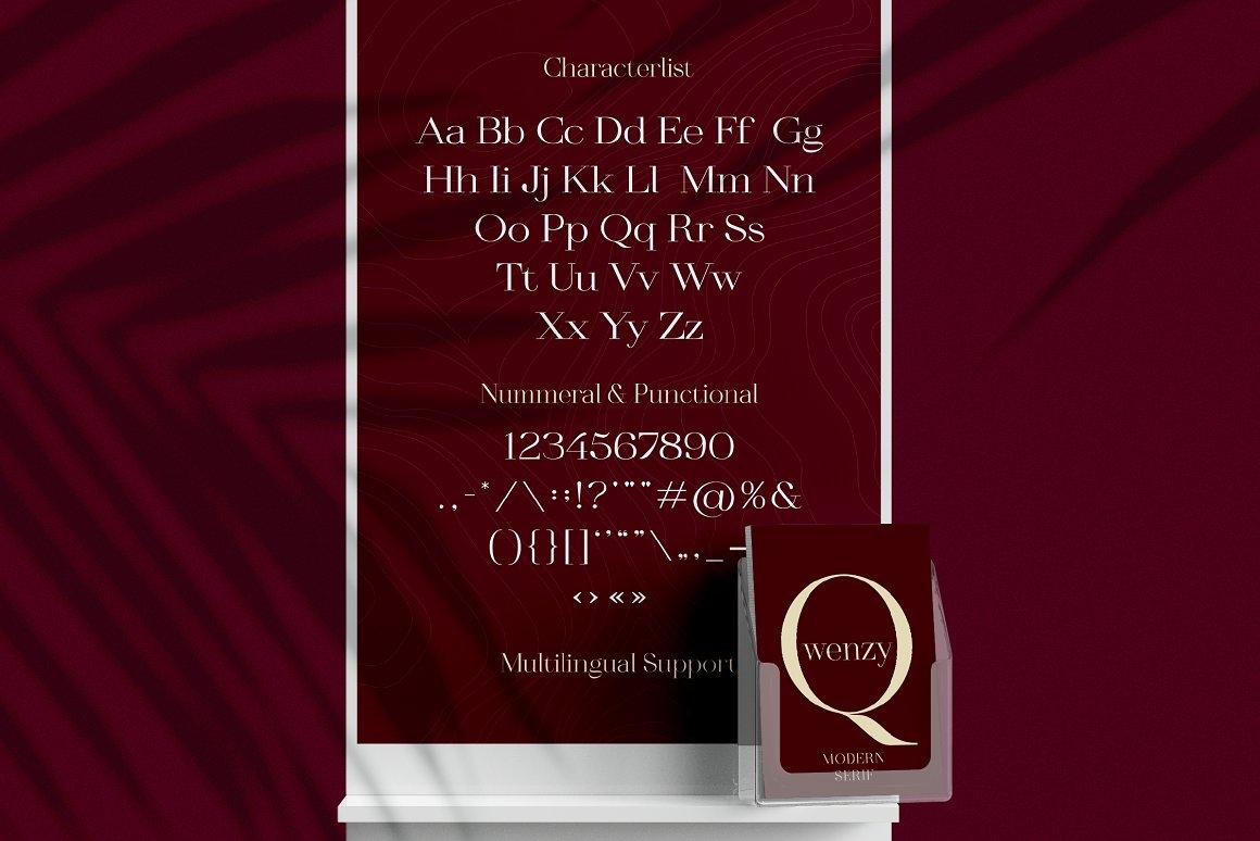 Qwenzy Elegant Serif Font-4