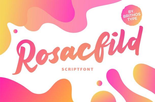 Rosacfild Bold Script Font